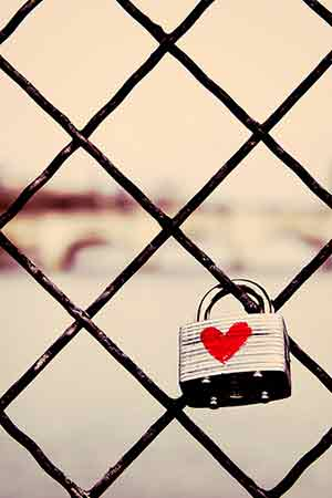 Parisian Love Lock